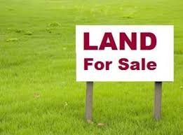 develop your land