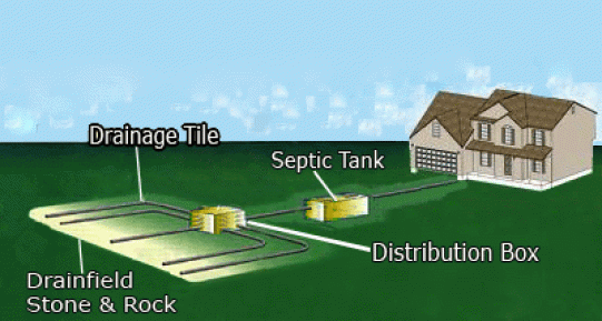 septic distribution